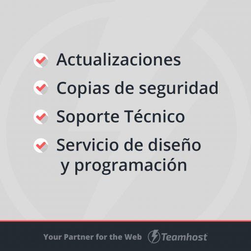 plantillas wordpress servicios programacion y diseño